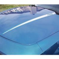 2010-2011 Camaro Hood Accent Stripe w/Pinstripes Kit 2 Pc.